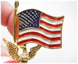 Red White Blue Flag Pin